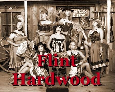 Adventures of Flint Hardwood, Bounty Hunter