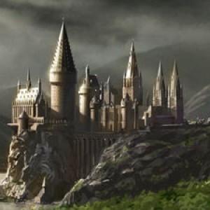 Hogwarts Harem