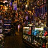 Little Shop of Curses